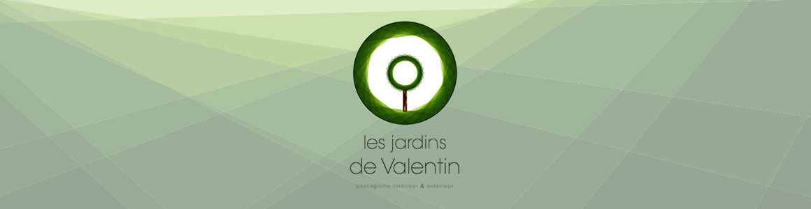 Jardin_valentin_couv
